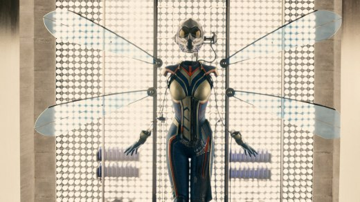 wasp-costume-pic
